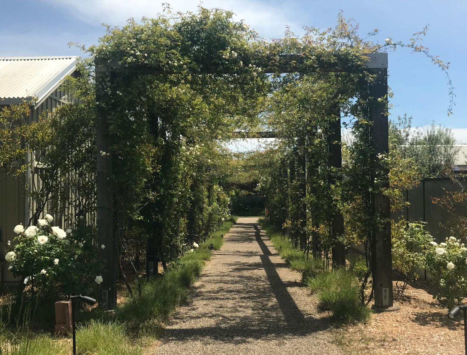 The Arbor Walk at Carneros Resort